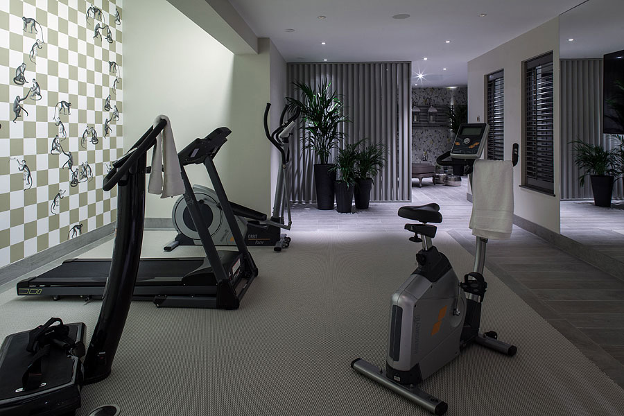 luxury home gym